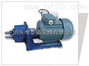 WCB齿轮油泵 泰盛设计新型更节能