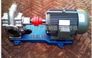 不銹鋼齒輪泵,防腐齒輪泵,化工齒輪泵,食品齒輪泵,雜質齒輪泵,高質量齒輪泵