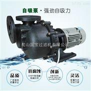 国宝塑料耐腐蚀离心泵,卧式自吸污水泵,厂家直销