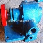 RCB沥青保温泵产品现货供应找宝图泵业