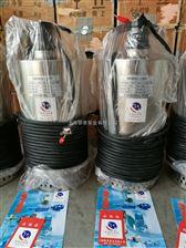 QN不锈钢潜水泵