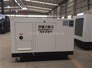 移动式静音发电机YT15RSE