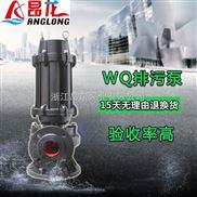 立式高扬程潜污水泵 污水污物潜水电泵