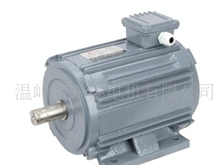 H170TYD系列卧式三相交流低速同步电机